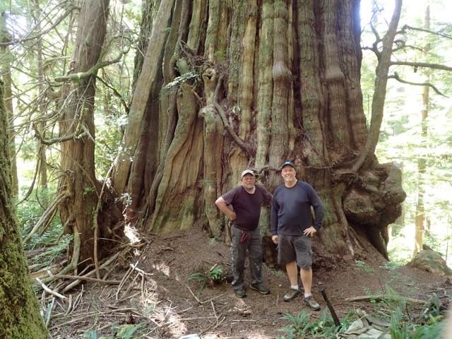 John & Big Tree